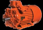 Электродвигатель   55кВт  3000  АВ225М2У2, 5